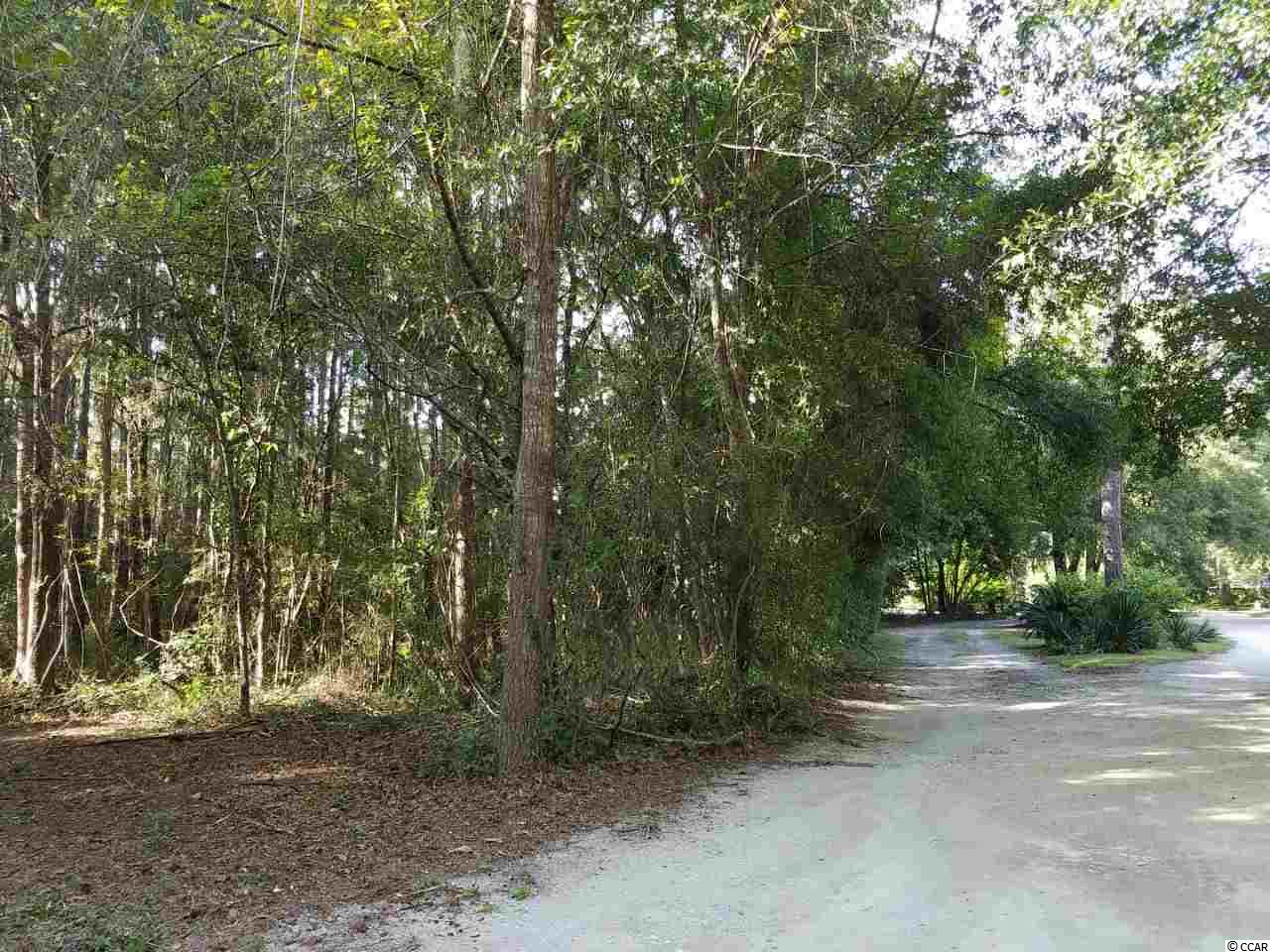 """Homesite - .62 Acres - in small, private  neighborhood, with some homes located creekfront and overlooking The Pelican Inn on Pawleys Island.  This neighborhood has primary and 2nd homes and is the former site of the old Kaminski Estate. This is the largest residential lot available in the highly desirable """"East of Hwy 17, Pawleys Island"""" area.  Great location, away from the hustle and bustle, yet convenient to grocery stores, restaurants, shops, and all that Pawleys has to offer.  You can ride your bike to the beach and creek on Pawleys Island! Pawleys Island Woods is a quiet area where you can hear the ocean waves, and see a vast assortment of shorebirds found in our coastal habitats."""