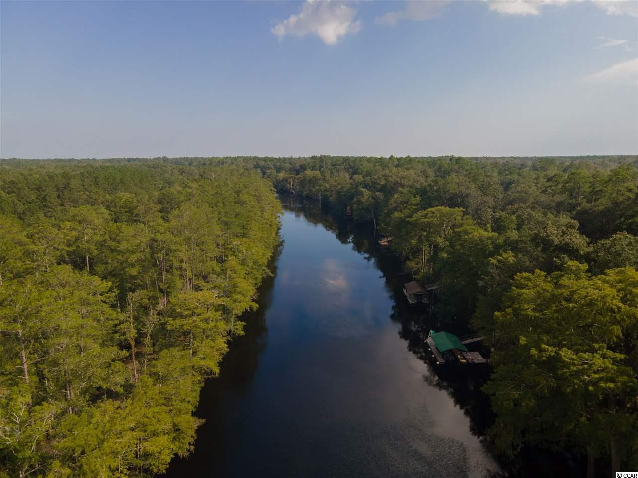 Beautiful high bluff river property on the Waccamaw River- 100 ft. along river-NOT in a flood zone. Lot did NOT flood during Matthew or Florence.  Build your dream home with not time limit to build and choice of builders.  Public water, electricity available. Country living at it's best, with boating & fishing. Easy access to Hwy 22, Hwy 90 and beaches. See today!