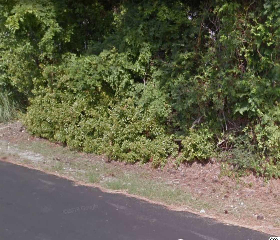 Location, location, location! This lot located in the heart of Myrtle Beach offers a great opportunity for you to build your residence or business. Close to all the area attractions, Broadway at the Beach, the Myrtle Beach Boardwalk & the Beach!