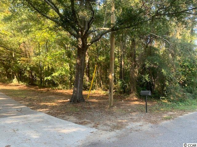 Huge lot to build your dream home in Pawleys Island. This lot is east of Hwy 17 very quiet area on a dead end street. You are in the heart of Pawleys Island and you have your privacy. 100X200 lot. make plans to see this today. look for the sign.