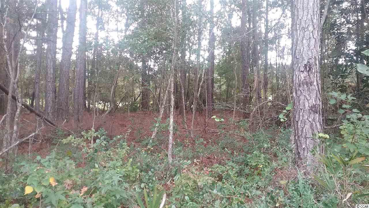 Lovely golf course lot on pretty street on which to build your home. Located within the Wedgefield Plantation community with its golf course, restaurant, tennis court and swimming pool. Square footage is approximate and not guaranteed. Buyer is responsible for verification.
