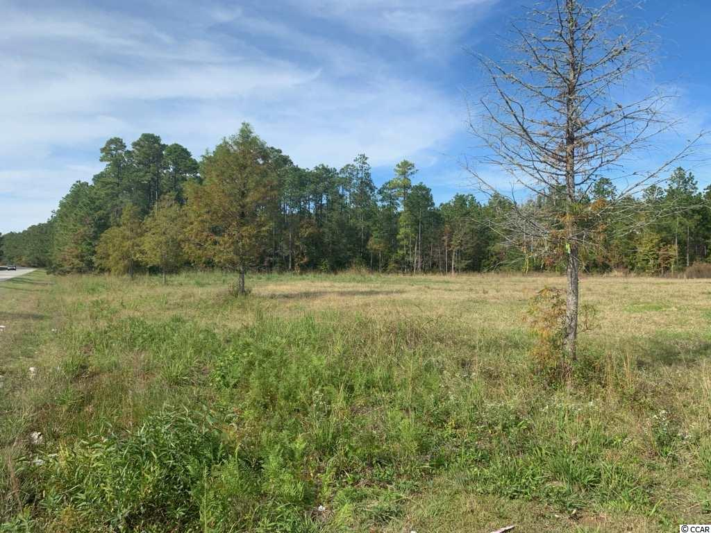 4 acres located on Pennyroyal Road and zoned for industrial use. This tract is cleared and is approximately 5 miles south of Georgetown less than a mile off of US Highway 17.