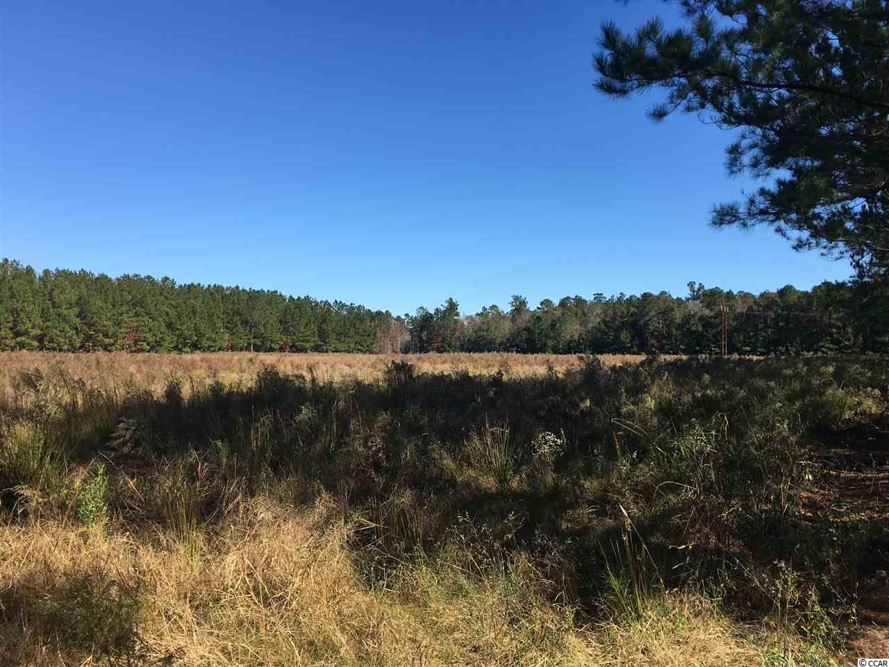 Excellent opportunity to own nearly 30 Acres near downtown Conway.  Approximately 10 acres is cleared and the rest is lightly wooded.  Currently zoned SF40.  Owner also owns the property at the road front and that property is negotiable.