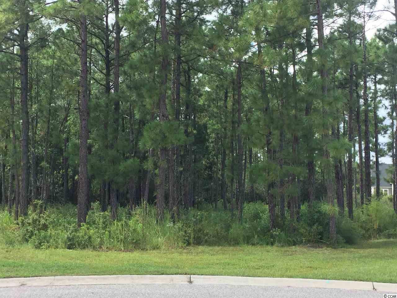 EXCELLENT VALUE FOR THIS DREAM CUL-DE-SAC LOT LOCATED IN WATERFORD PLANTATION! YOU MUST VIEW TO APPRECIATE THE LOCATION!  WATERFORD IS CONVENIENTLY LOCATED NEAR SCHOOLS, SHOPPING, POST OFFICE, AIRPORT, GOLF & MORE! DON'T DELAY!!