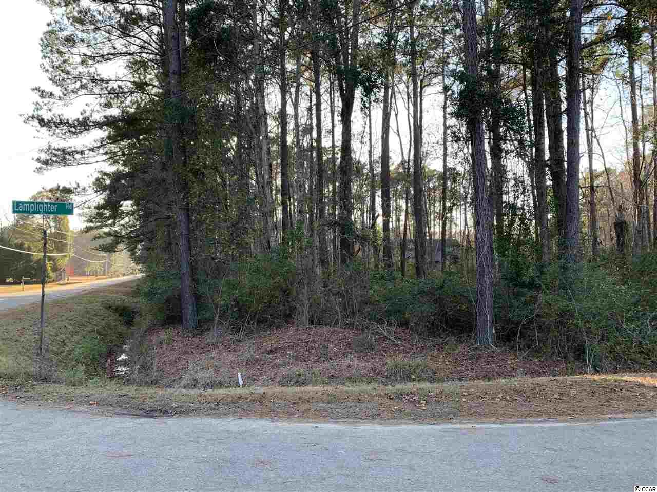 BUILD YOUR DREAM HOME ON THIS BEAUTIFUL 1 ACRE WOODED LOT ON THE CORNER OF SHADY BRANCH AND LAMPLIGHTER RD. TWO SEPARATE DRIVEWAY ENTRANCES WITH TILES(PIPING) ALREADY IN PLACE.  BOTH SIDES OF THE STREET ARE LINED WITH BEAUTIFUL CUSTOM BUILT HOMES. NO HOA AND THE LOT IS LOCATED VERY NEAR TO THE ENTERPRISE LANDING BOAT RAMP AND ICW. DONT MISS OUT!