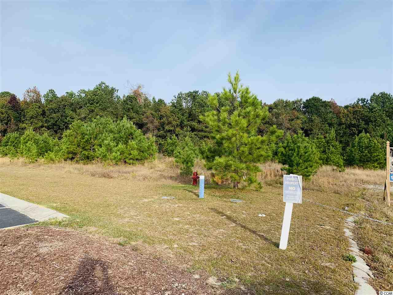 This is an investors dream. 3.64 Acre in the Carolina Yacht Landing area.