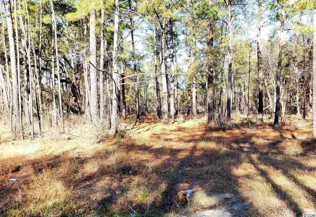 Building Lot (.69AC) located off Lee's Landing Circle and Hwy 90 near Conway, SC. No HOA and no time frame to build. This is the perfect opportunity to purchase your very own lot down by the River! Lot is located on a channel off of the Waccamaw River. Boat Landing is less that a mile away. If you need more space, the adjacent lot is for sale also. Call and inquire today.