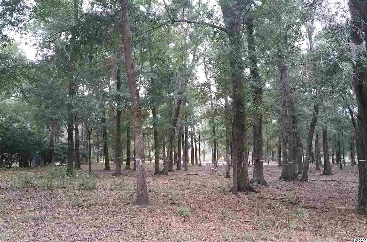 Estate lot for sale near the Waccamaw River in Pawleys Island, South Carolina.  Great lot with minimal site work needed to start construction on your next home.  Lot measure approximately 0.28 acres and is 111' x  60' x 86.9' x 60' x 116' - so there is plenty of room for a larger home or right sized house.   call for more details.