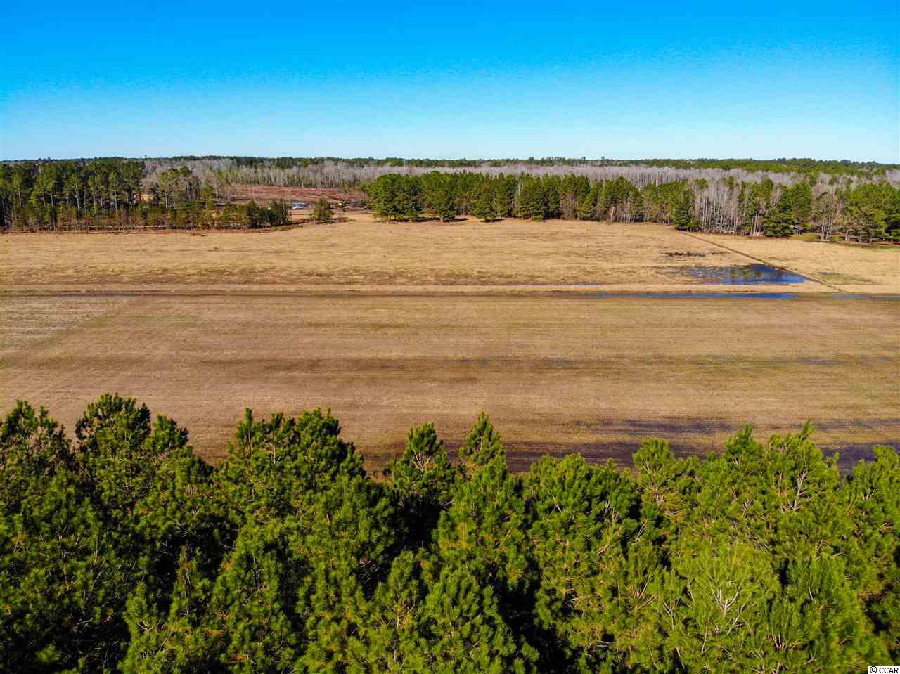 Nice long lot that you can farm or build on. A mix of wooded area and cleared land to suit whichever you prefer. No HOA to restrict your imagination! 12.64 acres and 225 feet of road frontage. Hurry, this won't last long!