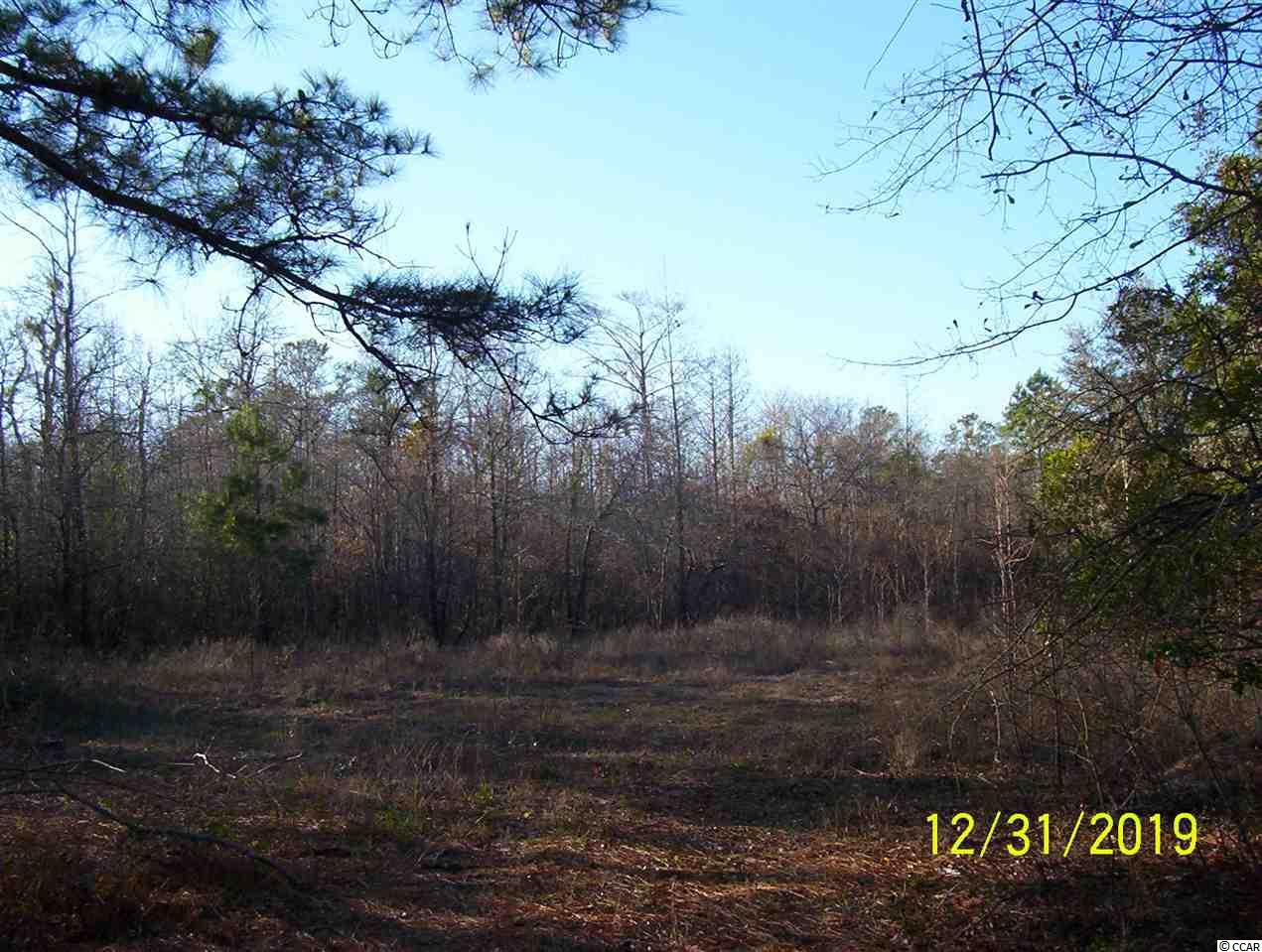 VERY NICE 4.68 ACRE WACCAMAW RIVERFRONT TRACT NORTH OF CONWAY, VERY QUIET AND PEACEFUL AREA, TRACT SIZE IS 154 X 1,094 X 162 X 1,210, SURVEY PLAT ON FILE, HOUSE MUST BE BUILT ON PILINGS, ACTUALLY CONVENIENT TO MYRTLE BEACH, OWNER FINANCING, EXCELLENT PRICE!!!!!