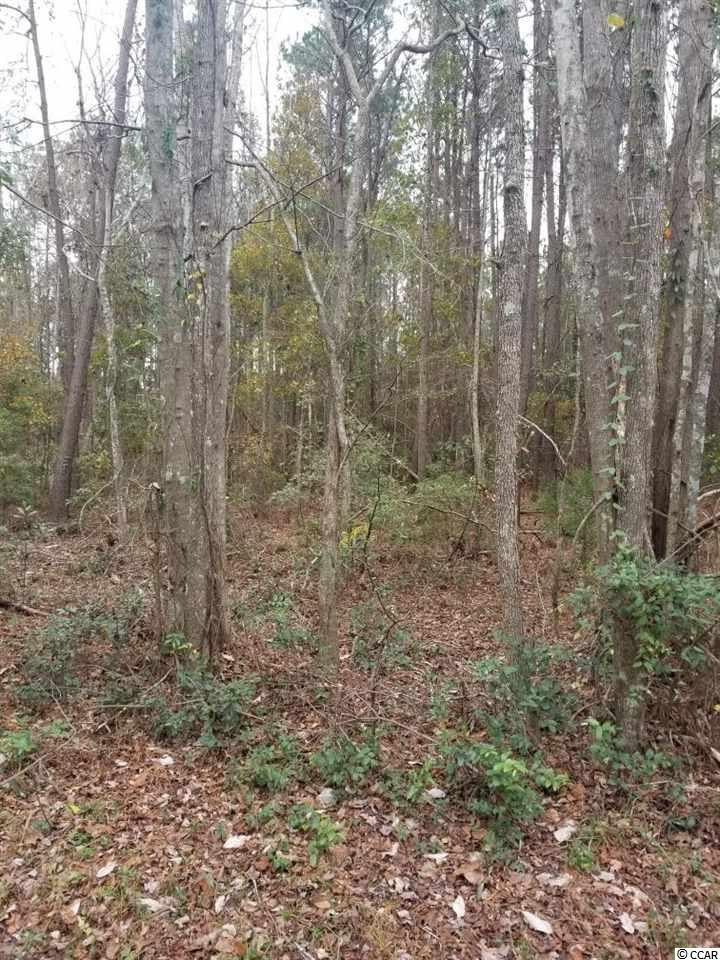 .83 acre in residential area with no HOA. Great location for all Pawleys Island and Litchfield Beaches has to offer. Only a few minutes to the beach. Close to shopping, dining, and fun.  Great place to build your Dream Home! 125 ft road frontage.