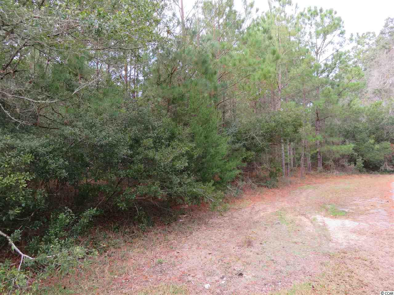 Prime opportunity to own a 1 acre lot in Pawleys Island with no HOA. Awesome location close to Brookgreen Gardens, all the Waccamaw area schools, close to all the shops and dining in the Pawleys island area. Come and build your dream home in the beautiful area of Pawleys Island today!!!