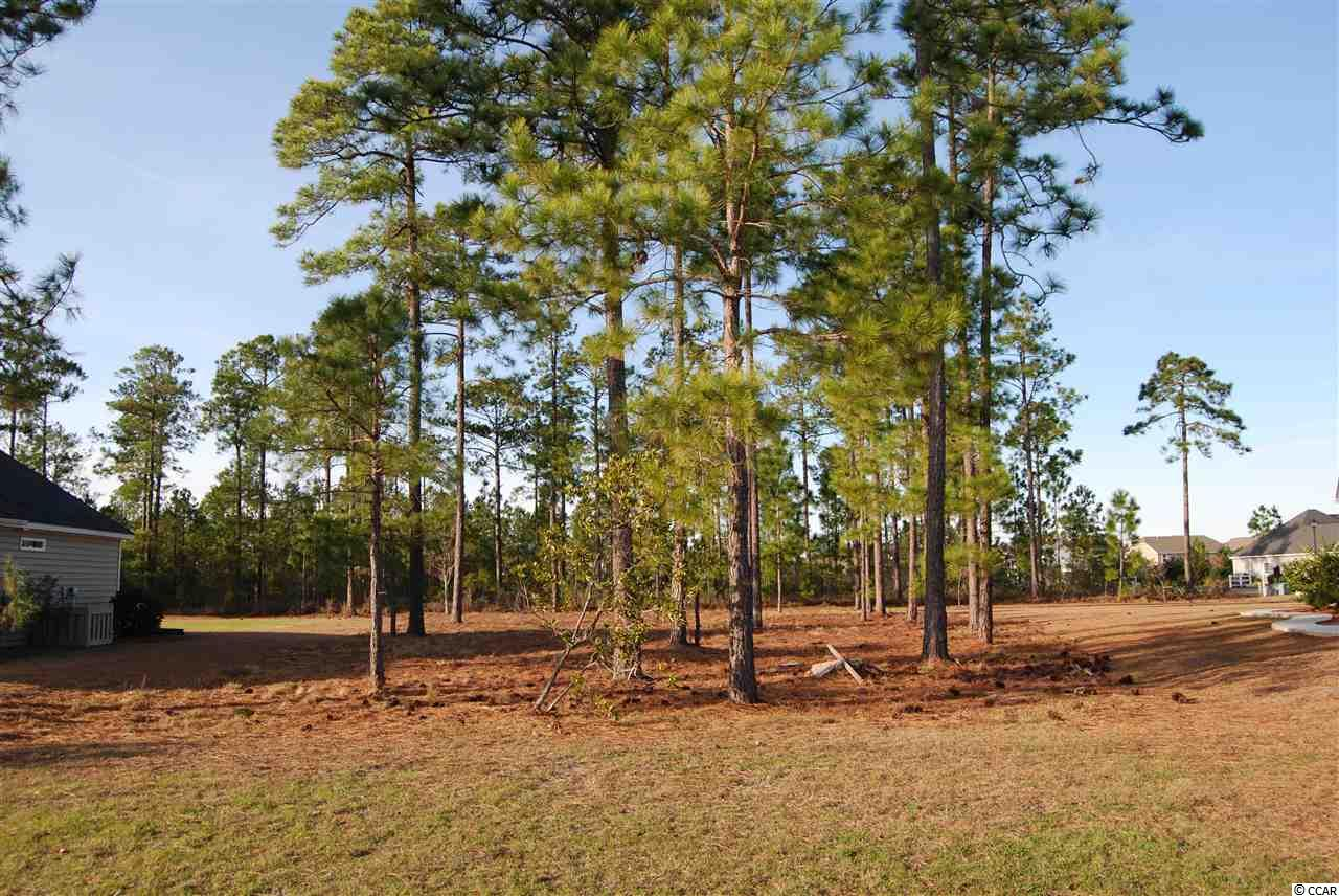 Great Price on this oversized Cul-De-Sac Lot in Popular Waterford Plantation!! Subdivision in excellent location near Schools, Shopping, Restaurants, Golf Courses and More. Neighborhood amenities include Pool & Tennis Courts.