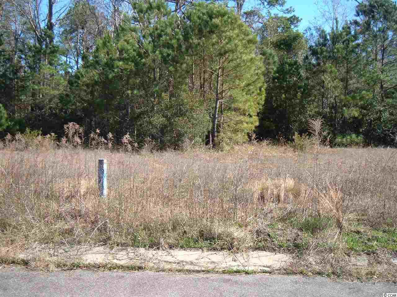 COMMERCIAL LOT. PRICED TO SELL! East of Hwy 17 South of North Litchfield Beach Stop Light. Build your own SHOP  or OFFICE  Lot #6 is also available.