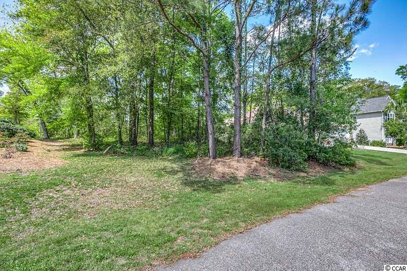 Vacant wooded lot located next to 92 Red Maple Drive.  No time frame to build.   Cypress Point is a lovely out-of-the=way small community located in between Litchfield Country Club and River Club. No HOA.  Call me today for additional detail