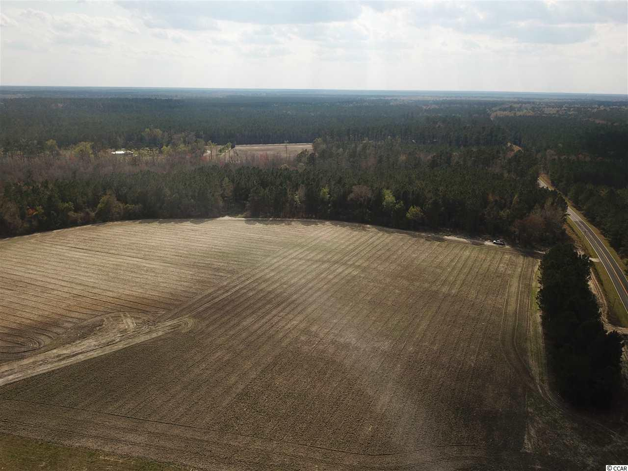 Beautiful 50 Acre farm to build your dream home,have your horses and cows if you wish and room to hunt! A section of this farm is cleared with wooded area at the back of the property for great privacy! Excellent road frontage!