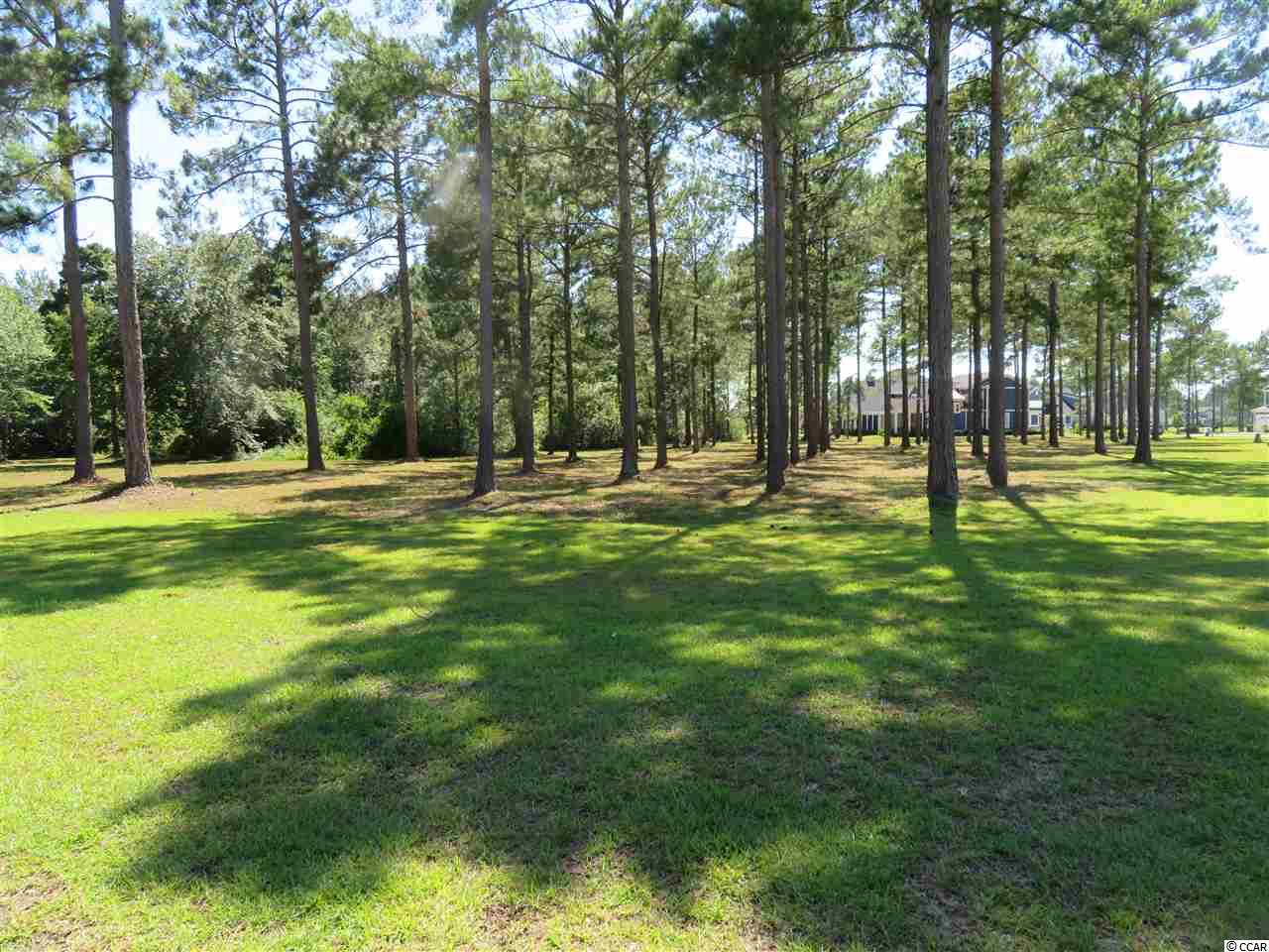 Buy and build on this corner lot in Waterbridge. This lot is very close to the state of the art amenities center with the largest residential community pool in the state of SC with junior olympic-sized swimming lanes and a jetted spa plus much more! Build your custom dream home, only a short walk away from the Village style clubhouse and 24 hour fitness center. Waterbridge has over 60 acres of lakes within the community for kayaking, canoeing, row boating. The amenities also include tennis courts, pickleball courts, basketball, sand volleyball, and bocce ball.  This is the time to buy and build in the luxurious gated community of Waterbridge.