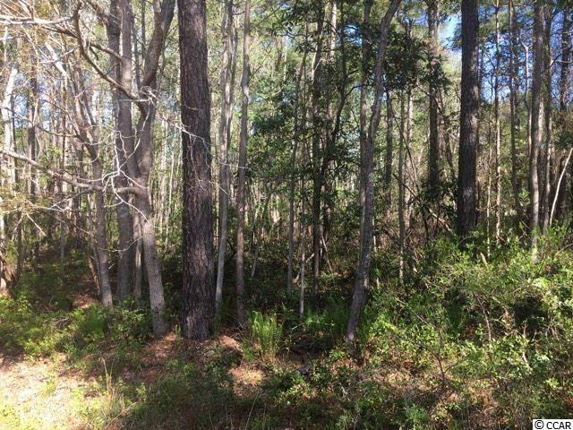 Litchfield Country Club is an excellent neighborhood to call home! Lot # 35 is a .46 acre building lot with septic permit on file. Lot # 36 is a .60 building lot that is also for sale with septic permit on file. Owner is a licensed SC Realtor.