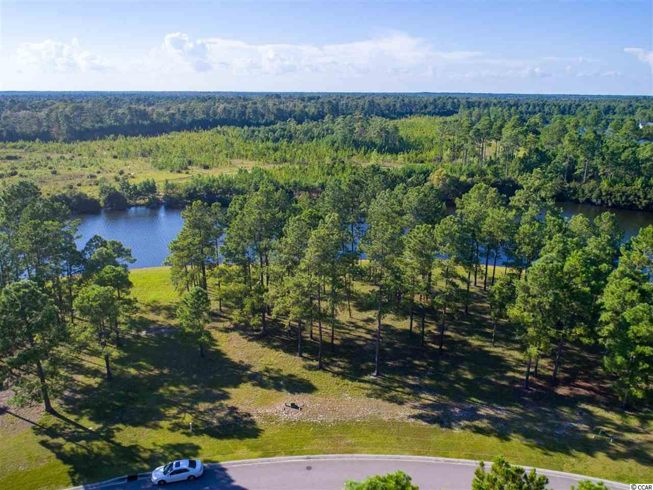 Gorgeous lakefront lot located in the highly sought after gated community of Waterbridge in Carolina Forest ! Lot 44 features over 90ft on the backside of the property with beautiful water views and is an easy walk to the amenities center. Come build your dream home w/ no time frame to build. On top of this fantastic lot, Waterbridge's awesome amenities include a huge pool area, tennis, fitness center, volleyball & basketball courts, boat storage, a boat launch & pier, fire pit, swim-up refreshments bar. Conveniently located close to the award winning school system and just a short drive to the Tanger Outlets, MB Airport, hospital, shopping, dining, entertainment, golf, area attractions, & the beautiful Atlantic Ocean w/ 60 miles of white sandy beaches ! Don't miss ~ come live the dream! Very wide in the back.