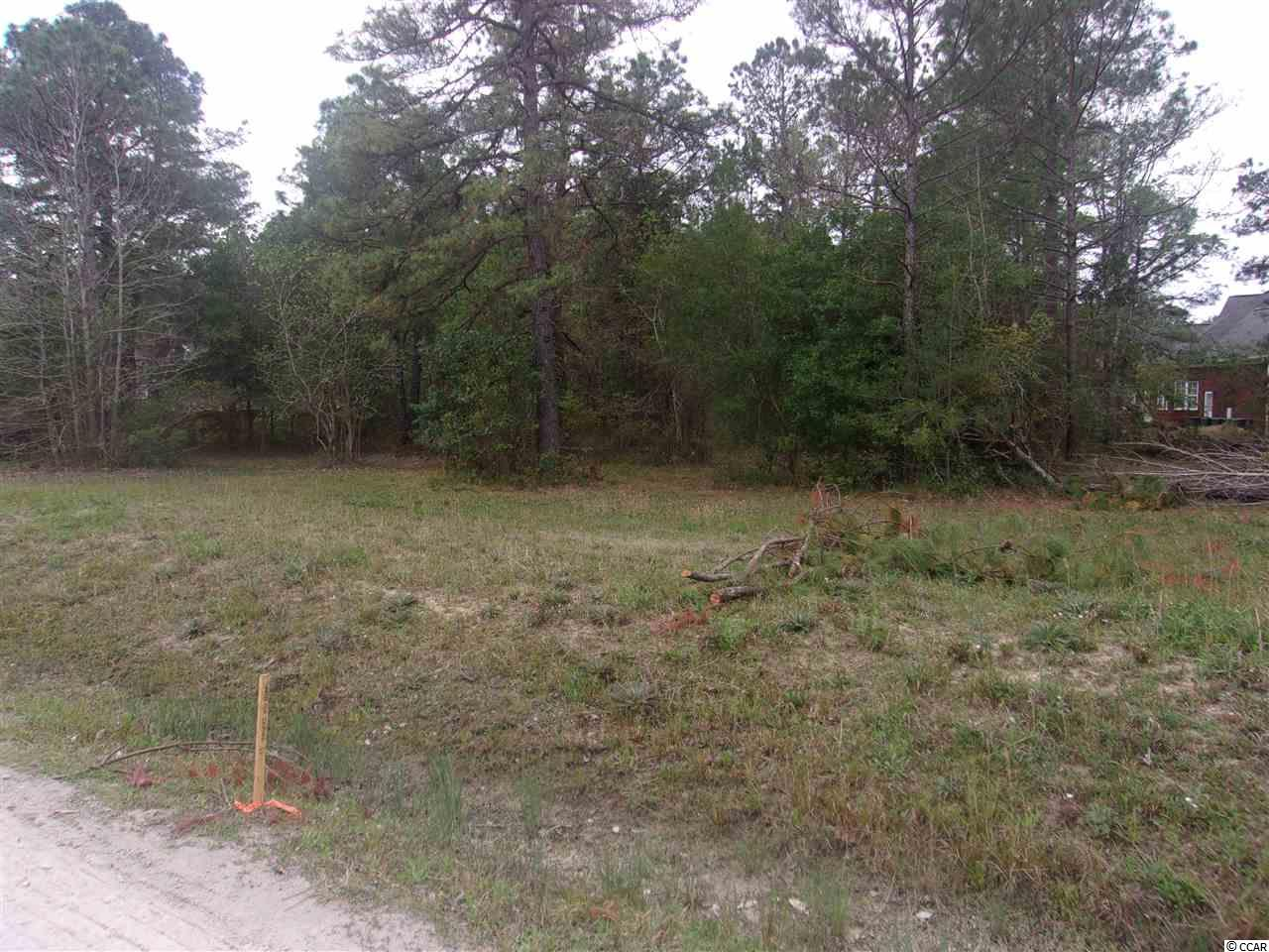 This is one of three lots on Winningham Lane.  Each lot is 1/2 acre perfect for building your desired home with no Homeowners Association.  Lots have already been cleared and subdivided, awaiting approval from the County.  Seller is adding a deed restriction to each lot restricting them from being used for mobile or manufactured homes.  Great location close to all amenities such as shopping, dining, beaches, golf courses and entertainment.