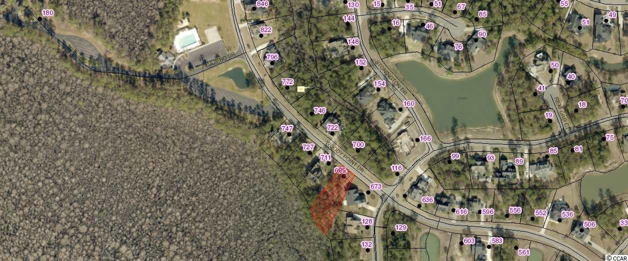 Amazing homesite in established upscale neighborhood. Build your dream home on this spacious lot. Collins Creek Landing @ Prince Creek features great amenities including: community pool, clubhouse, boat landing, day dock, playground, nature walk, fenced boat storage, soccer fields, and much more! Just minutes away from shopping, dining, golf courses, Brookgreen Gardens, Huntington Beach State Park, the Famous Murrells Inlet Marshwalk and marinas. Choose your own builder and timeframe to build!!