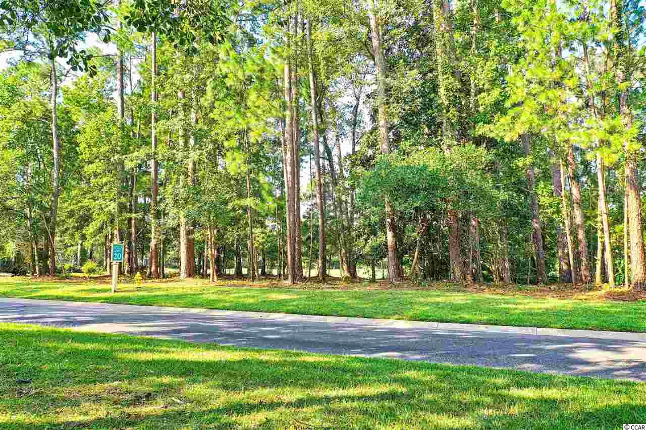 Looking to build your dream home...Look no further. TIDEWATER PLANTATION is country club living in one of the most prestigious world class golf course communities with live oaks and southern pines situated in between the inter coastal waterway and the Cherry Grove Inlet to the Atlantic Ocean. This gated community offers endless amenities which include tennis courts, pools,clubhouse,activity center, exercise rooms and a BEACH FRONT CABANA that is fully equipped for any occasion.  Build your home on this lovely LARGE LOT which overlooks the first green at Tidewater Golf Club. This lot has much to offer. It is situated between two beautiful homes with mature land scrapping, and located on Tidewater Drive.