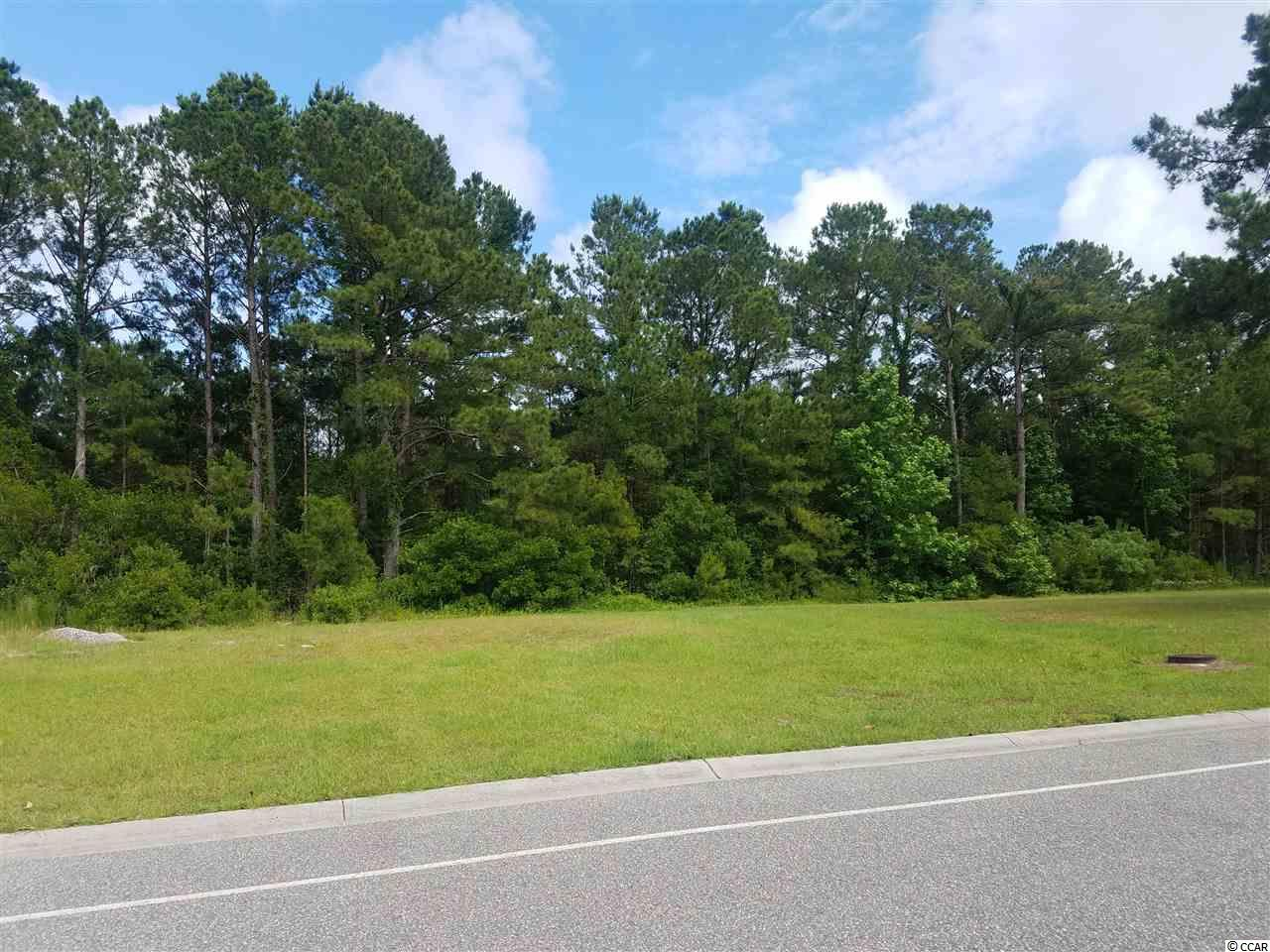 It doesn't get any better than this! If you prefer an all brick home with privacy walls built by a custom builder in a gated community only 8 minutes to the NMB beachfront, Waterfall is for you. Built around Tranquility Lake, an 8.5 acre stocked lake for fishing or non gasoline boating, Waterfall is a 1 mile circle of 138 lots with an Amenity Center, a pool, fitness, TV lounge, kitchen and low POA fees. Little traffic, Horry Co only taxes, not in a flood zone, and up graded standards are also great features of this beautiful and exceptional community. Waterfall is about location, location, location. 1 mile to 31, 5 minutes to Seacoast Hospital and medical offices, 5 minutes to 4 of the 5 NMB schools, 5-10 minutes to NMB shopping, dining and 1 mile to the NMB Sports Park for the zip line, water and aqua parks, segway trails, 2 doggie parks and all of the sports for you and your visitors. If golfing is your thing, there are 20 golf courses for your golfing variety with 20 minutes. The location also offers little to no seasonal traffic giving you a serene walking, biking or running area but yet you are close to everything the North Strand offers. Check us out.!!!!  .