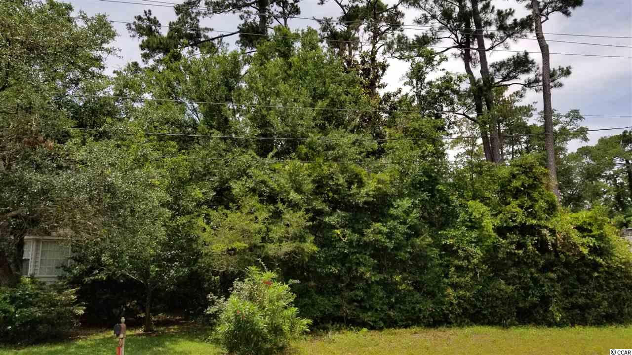 Nice wooded lot on paved street, east of Highway 17 Bus, nice houses surround it, ready to build with all needed utilities in road at lot, survey is available