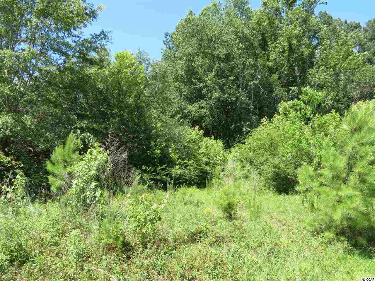 A half acre wooded lot with 80 feet road frontage and 300 feet in depth.