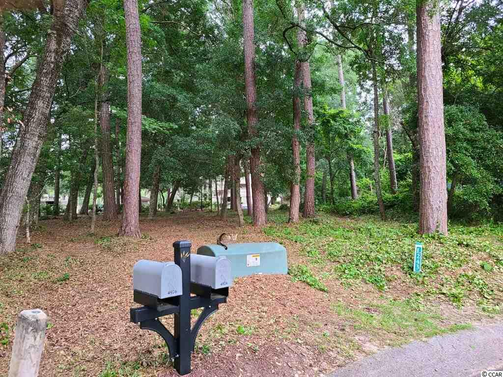 Tidewater Golf Plantation,  Gated community 24/7 with lots of amenties, golf, tennis, pools, fitness center, proshop with restaurant. Tidewater ocean front beach cabana for homeowners only. Also enjoy close by beach, parks, shopping and restaurants.