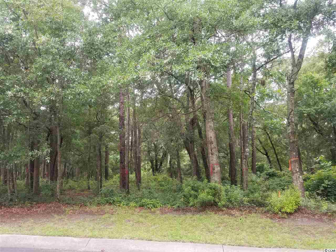 Are you looking for a large lot to build that dream home. This lot is located on the Bluffs side of The gated community Tidewater Plantation. This prestigious development boasts a beautiful Golf Course that wraps around the Intracoastal waterway and the beautiful Marshes overlooking Cherry Grove. The lot is .41 of an acre allowing for a great home and a beautiful large space for front and back yards. Tidewater Plantation has the Tidewater Golf Course, 3 beautiful swimming pools, Numerous tennis courts, a fitness center and bocce ball.  The best part of living at Tidewater is a Private Beach Cabana just for the residents at Tidewater Plantation. No more looking for a place to park at the beach, no more public restrooms. Come look at this lot and dream the life of luxury along the Coastal Waterways of the beautiful Atlantic.