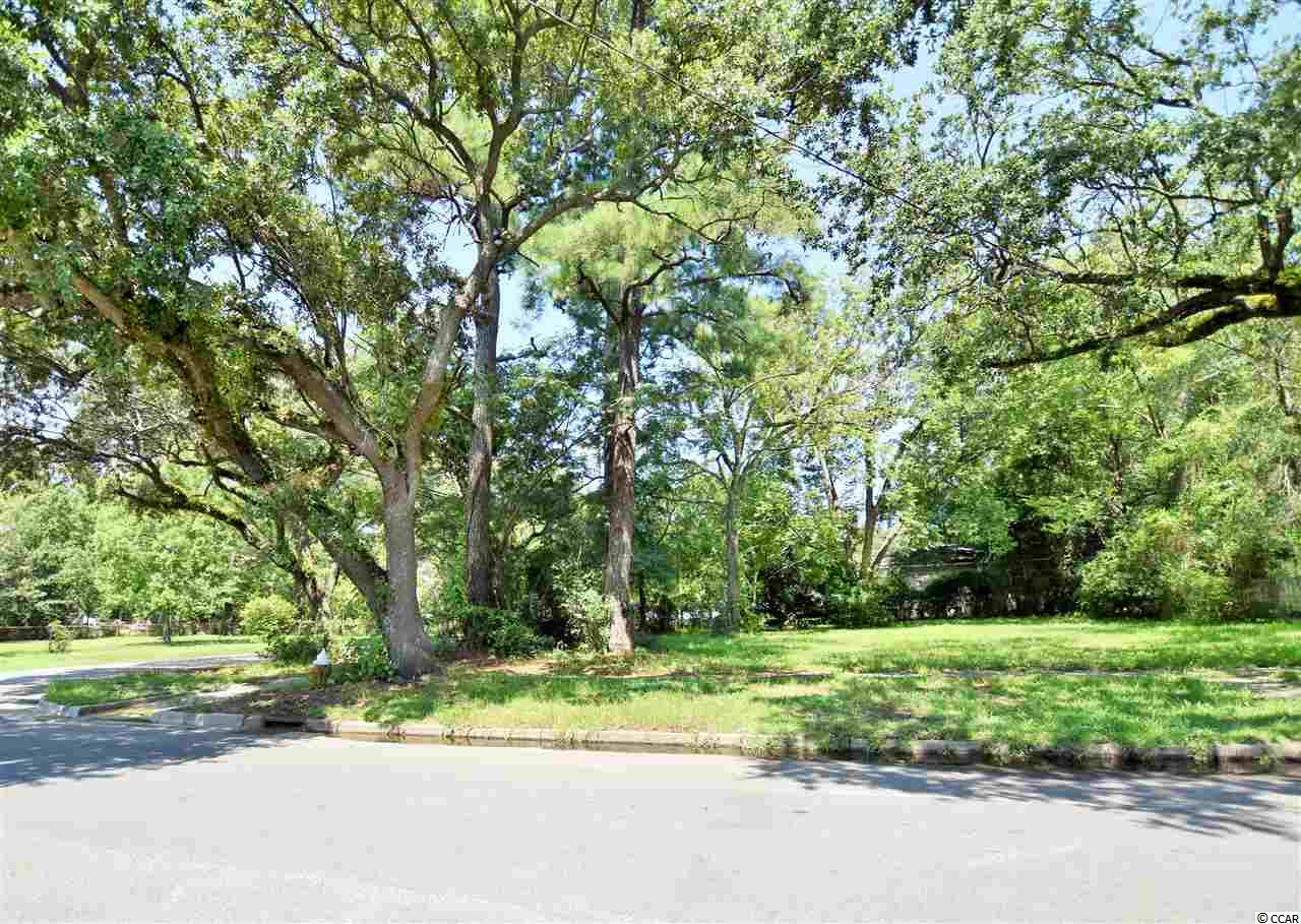 Affordable home-site located in The Historic Town of Georgetown, SC adjacent from Mike Johnson Park! Ideal location to build a long term rental property or a primary residence close to downtown. First come, First Serve. This one won't last long !