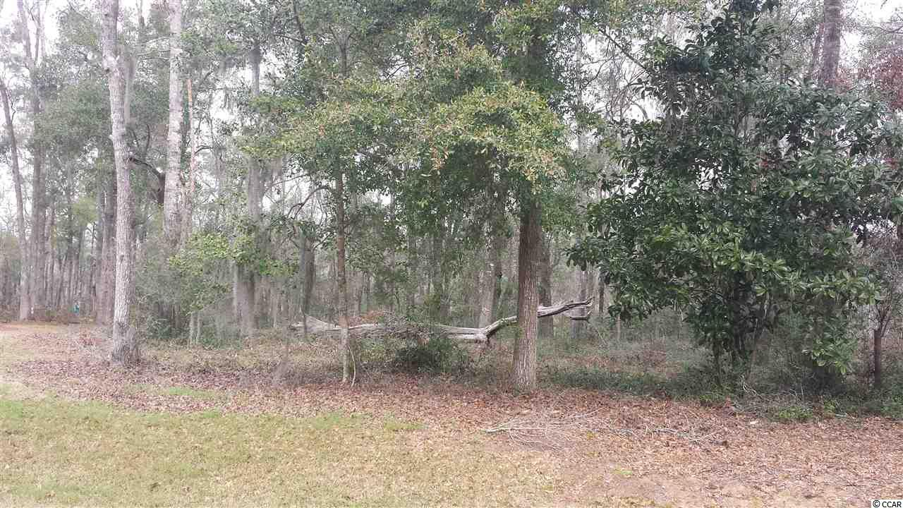 Outstanding Value! Perfect for your Dream Home! Located directly on the Waccamaw River, Allston River Bluffs was part ofthe Historic Waterford Plantation. It consists of 20 homesites on 31 acres of magnificent grounds surrounded by majestic LiveOaks. A private, gated entrance leads to the Homeowners River Clubhouse and then to the privateMarina. Each homesitehas a deeded boatslip that can accommodate up to a 32' - 36' vessel.
