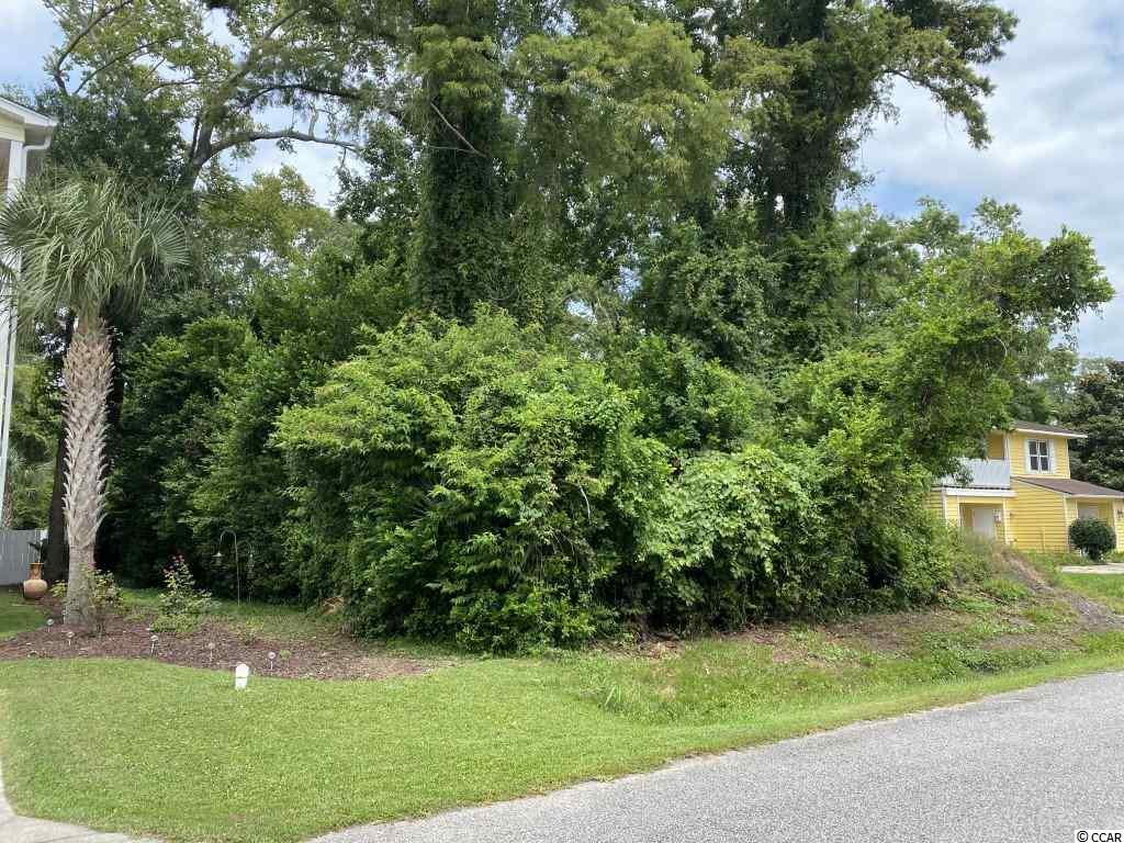 This is a great sized lot, in a great location, with lots of possibilities! You could build your dream home or an excellent investment property. The lot is just a few short blocks from the beach and has no HOA!