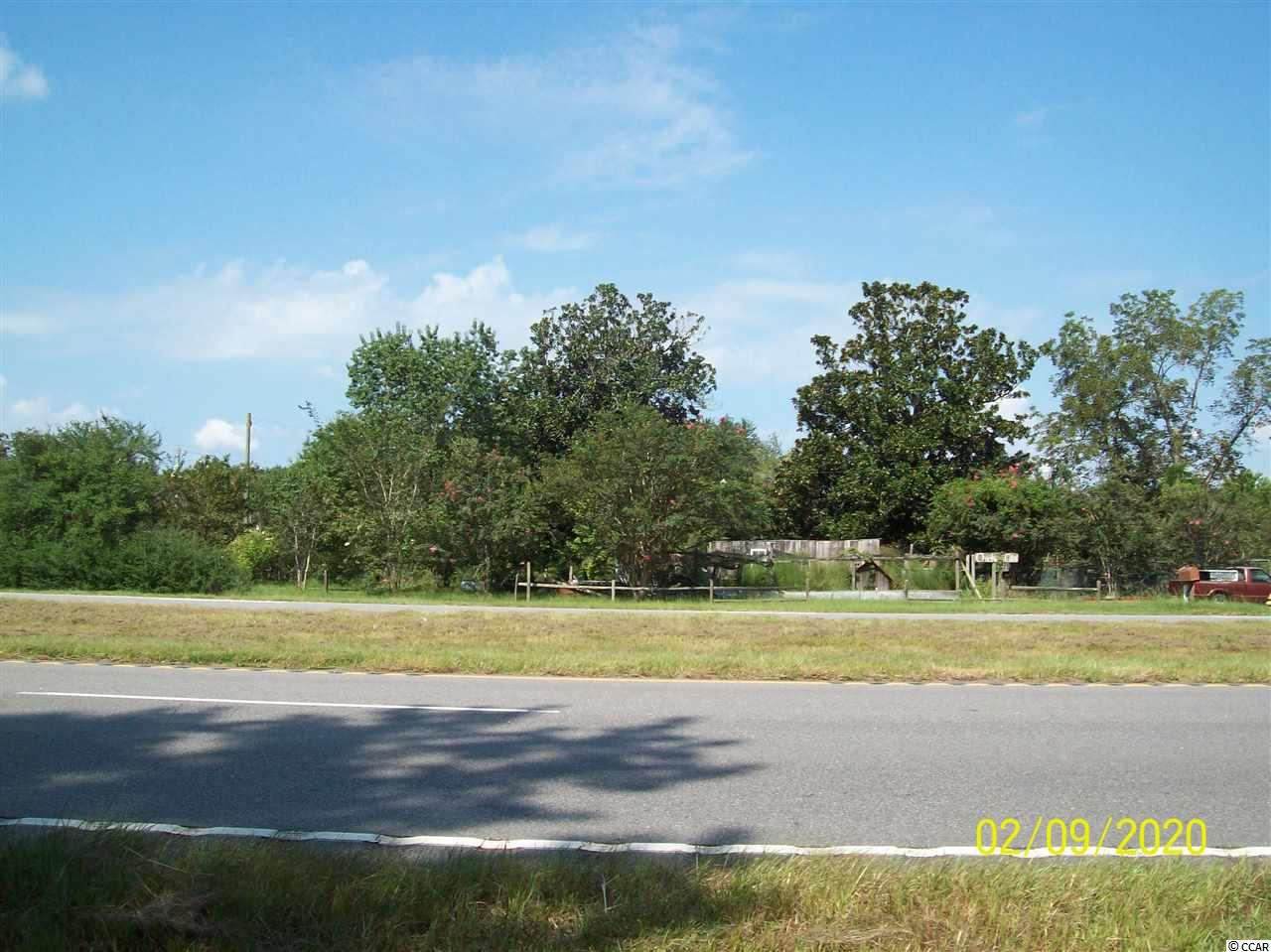VERY LARGE 5BR BRICK HOUSE ON 11 ACRES, PLUS A 4BR HOUSE, PLUS A DUPLEX HOUSE, PLUS A MOBILE HOME, ASSORTMENT OF STORAGE BUILDINGS, SHEDS, BEAUTIFUL LAND, SEVERAL HUNDRED FT. ON HWY. 17, NICE FISH POND, HAS HOLE AVE., POWELL RD., AND HWY. 17 FRONTAGE, CAN SUBDIVIDE, GREAT PRICE!!!!!