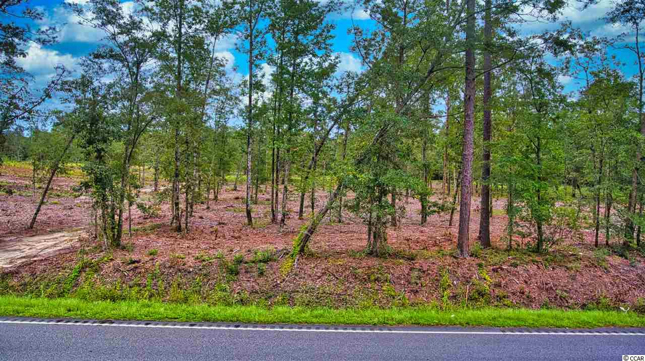 Not your typical parcel in this beautiful tract! These 37+ acres have gorgeous, mature trees, rolling hills, and a creek at the southern boundary line! Located just 20 minutes from the beach, this serene setting has so many possibilities for the equestrian, the developer, to nestle a private home within, or design a family estate.