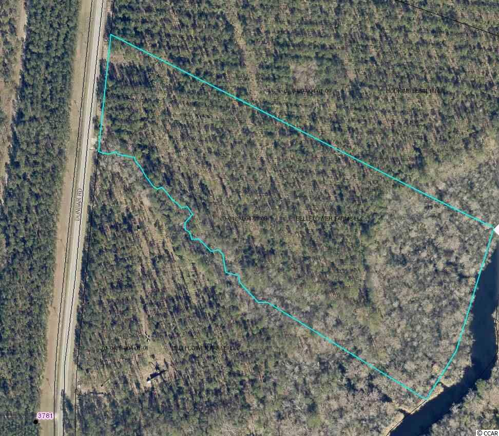 This is a beautiful 15-acre residential estate tract with 370' on Dunbar Road and 593' on Choppee Creek.  This is one of 5 large tracts in Millgrove Farms Subdivision that contains protective restrictive covenants to restrict mobile homes and lot subdivision.  It has county water and sewer available to the property and ready to build on.  It has a stream running along the entire southern boundary to a pristine river swamp adjacent to Choppee Creek.  This is a perfect retreat with deep water access to the Black River.