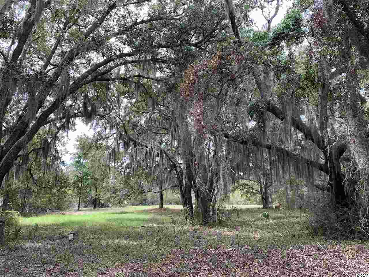 This is a large heavily wooded property directly across from the ocean and adjacent to the undeveloped beach of Hobcaw Barony. It is located in Island Green at the end of a quiet cul-de-sac. Perfect location for those who wish close proximity to the beach in a family location.