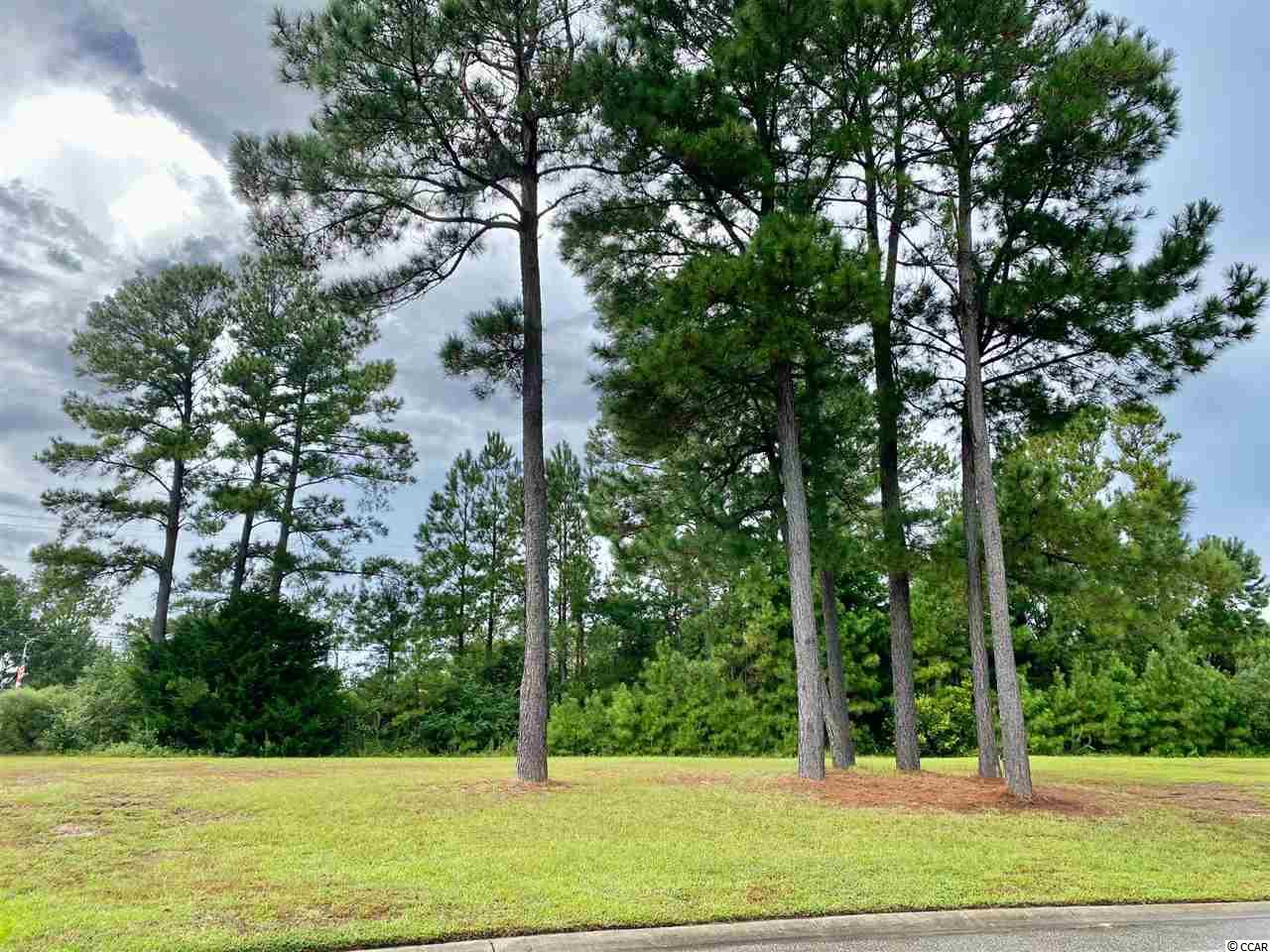Welcome to this hidden gem in Little River, SC that has some of the most beautiful homes. Build your Dream Home in the prestigious Waterfall community, a quiet tucked away community with an 8.5 acre lake.   This community is gated with a beautiful amenity center, a weight room and a pool. This beautiful lot is only minutes away from shopping, dining, and Cherry Grove beach, NMB sports complex and the dog park.