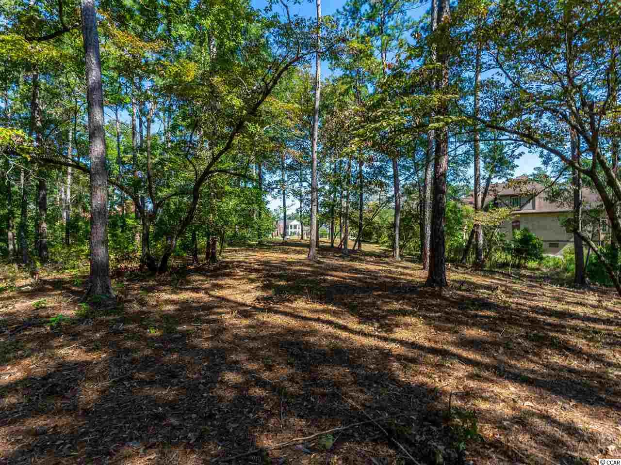 Imagine a beautiful, tranquil, tucked away retreat that is just 15 minutes from the beach!  Can the setting for your new home possibly get any better than this?!  Well…how about a 2.20 acre WATERFRONT lot on Collins Creek in Creek Harbour, a private, gated, upscale Intracoastal Waterway community??!!  Build your own dock and cruise the scenic ICW with all that it has to offer, including Winyah Bay and Atlantic Ocean access!    Community amenities include a large swimming pool, cook-out gazebo, clubhouse with kitchen, playground area, 150 ft. floating community dock, boat/RV storage, and boat ramp with day docks.  Very convenient to the shopping, restaurants, and live music of Murrells Inlet's popular Marsh Walk, as well as Brookgreen Gardens, Huntington Beach State Park, and Pawleys Island.  Or head up Rt 31 to enjoy Myrtle Beach and the North Strand's shopping, eating, and live entertainment venues.