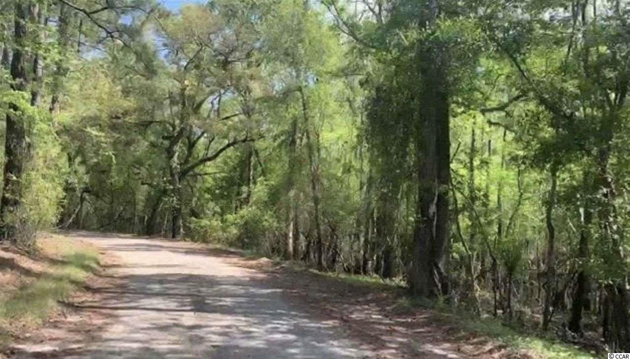 Absolute low country seclusion near river access with NO HOA, NO TIMEFRAME TO BUILD!!  Drop a john boat or kayak in the water just off the back of the lot and head right to the Waccamaw River!!  Excellent location just off the beaten path in Historic Conway Sc! Enjoy river access without having to pay the river front lot prices. This lot is just under 3/4 of an acre of beautiful country river setting with the boat landing being less than a half mile away. There is a Chanel on the back of the lot that leads to Waccamaw River. Septic Permit required.  Water and power tap available at road with absolutely no time frame to build!! Approximately 20 minutes to the beach and easy access to everywhere along the grand strand and Historic Conway such as schools, hospitals, nightlife, shopping, outlet malls, golf, entertainment and much more!