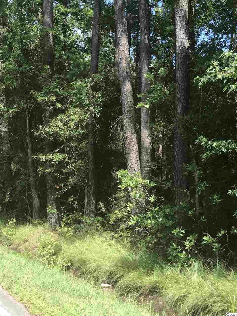 Nearly 6 acres of commerical property in the custest coast town of Little River, SC. The property is a 12 minute drive to Cherry Grove Beach access and 9 minutes from Little River shops, restuarants, casino boats and watersports! Land is zoned Commercial Forest Agriculture (CFA) that includes agriculture, forestry, low-density residential, commercial, social cultural, recreational, and religious uses. Easy access to hwy 9 and hwy 31. Listing agent is related to seller.