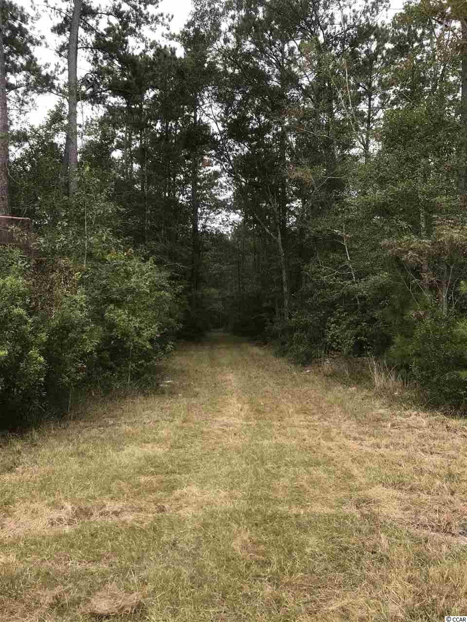 Great timberland and recreational property!  2016 Pine Plantation plus nice block of merchantable pine that is ready to harvest.  Oak-hickory ridge along a beautiful cypress swamp off Santee River provides the ultimate wildlife refuge!  Must See!