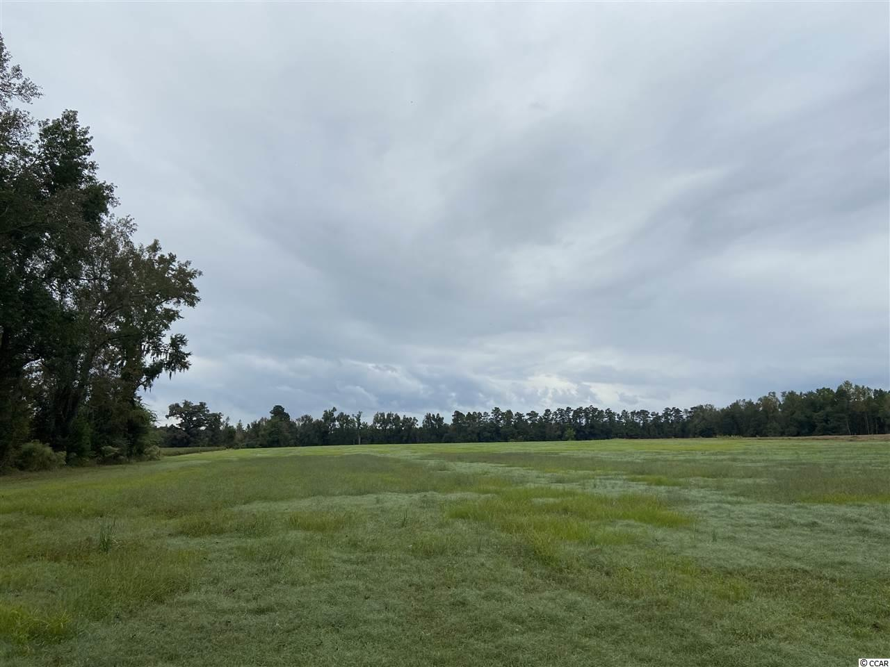 If you are looking for a place to build your forever home out in the country or just a place to have a beautiful farm this is it! A cleared hay field with endless potential. Plenty of room for all of your animals! Public water is available.