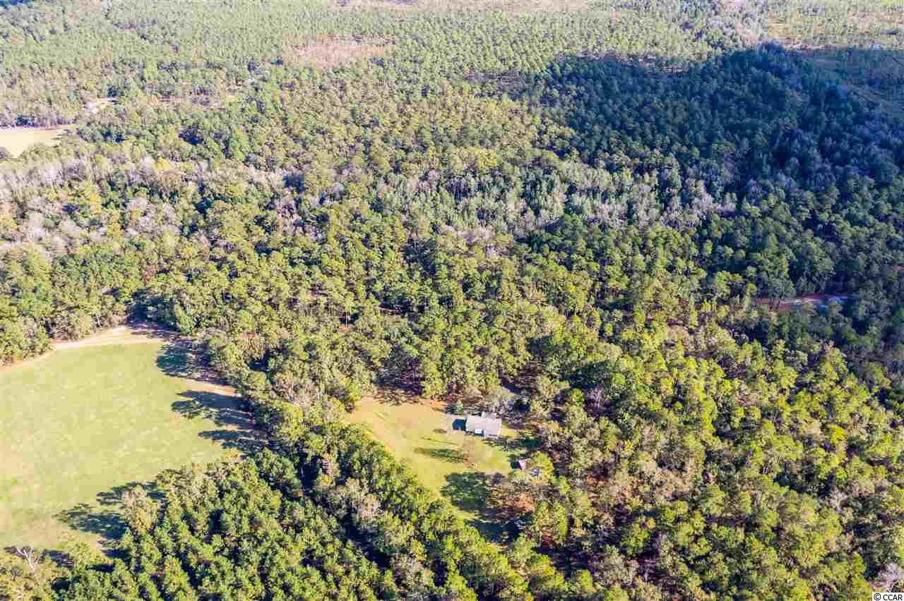 12.4(+/-) acres that borders the SC Dept of Marine and Wildlife Ocean Bay Preserve. The property is some of the most beautiful and quiet land in Myrtle Beach area and highly sought after. This acreage would be ideal for a hunter, outdoorsman, horse ranch, nature lover or those who just want peace and quiet and immediate access to walk the preserve. There is an additional 6 acres and home and an additional 14.5 acres that are listed.  Sellers want all land sold together or at the same time.. Call agent for particulars.