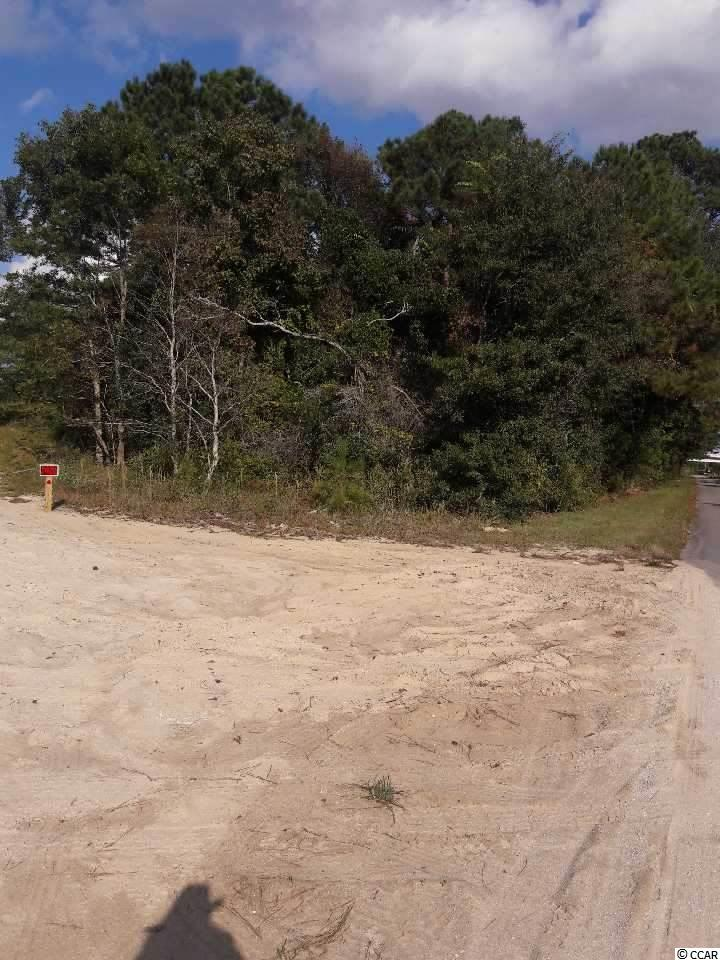 Prime wooded acreage less than 1/3 mile from downtown/main street in NMB Go in any direction with this 2 acre tract, from residential to commercial, rental development, storage unit development or Industry use