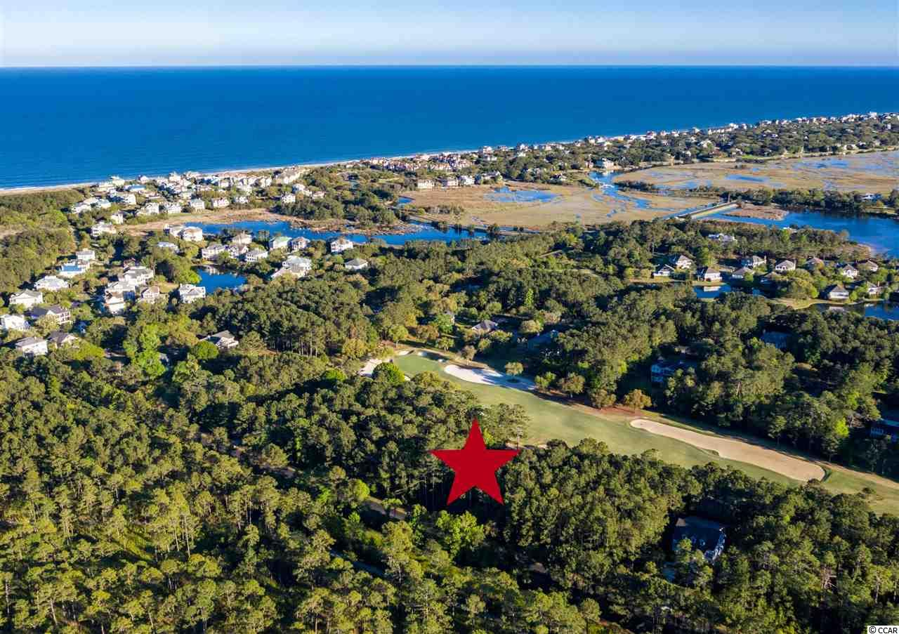DeBordieu Colony - Lot 320 Wallace Pate Drive is located just a short golf cart ride to the DeBordieu Beach Club! Build your dream home on this beautiful half acre lot with high elevation overlooking #7 Green of the Pete Dye Golf Course at DeBordieu Club. You can hear hear the ocean from here! Dimensions of this near beach, wooded lot are 100 x 250 x 100 x 258. Note: Lot 319 is also for sale, which means you could buy both and have a full acre, OR a side by side opportunity! (MLS #1905933.)  DeBordieu Colony is an oceanfront community located just south of Pawleys Island, South Carolina featuring private golf and tennis, saltwater creek access to the ocean, a manned security gate, and luxury homes and villas surrounded by thousands of acres of wildlife and nature preserves. There's never been a better time to consider building a home at DeBordieu Colony. Come see for yourself!