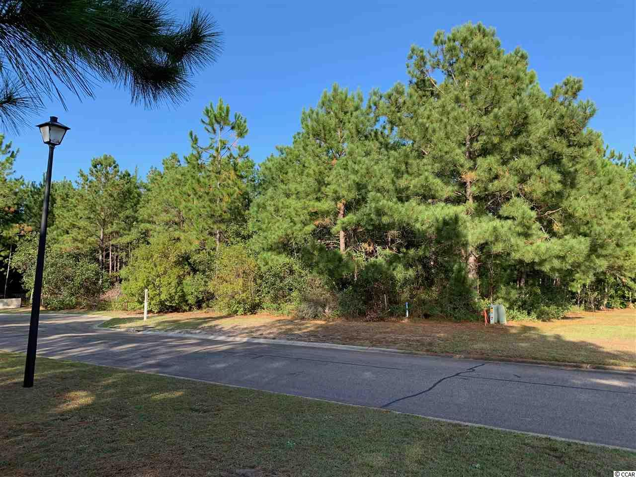 One of the last and largest residential home sites in Hunters Ridge Legacy section.  On a private culdesac surrounded by some of the largest homes in Hunters Ridge.  Seller is a licensed Real Estate Agent.