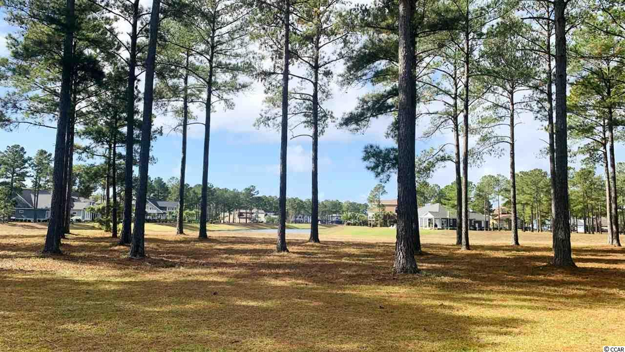 Take a look at this fantastic double lake front lot in Waterbridge!  This combined large lot is over a half an acre and has an amazing extended view of the length of the lake with an easy walk to the amenities center.  These two lots are being sold as a package deal. Owner had them merged so you only have an HOA fee for a single lot.   Waterbridge is considered to be one of the most desirable gated communities in the heart of Carolina Forest.    Build your custom dream home in this gated, upscale community.  Build on your time frame and choose your builder.  Enjoy multiple amenities including a resort style pool, swim-up refreshment bar, fitness center, tennis courts, volleyball court, basketball court, fire pit, boat launch and pier. It is close to golf courses, restaurants, shops,  medical facilities, award winning schools, Coastal Carolina University, and the Tanger outlet stores. Come enjoy the beautiful Atlantic Ocean with it's miles of white sandy beaches.
