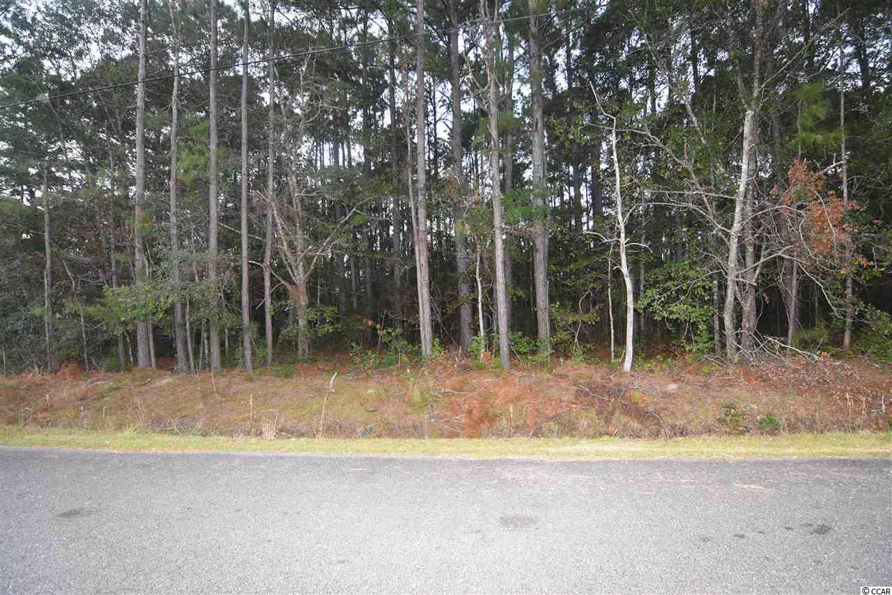 Lots of room to build your dream home on this 1.10 acre wooded lot located in Winyah Bay Estates with NO HOA.  Located close to South Island Ferry, Intracoastal Waterway, Francis Marion National Forest and minutes from the boat launch.  Very close to Historic downtown Georgetown and approximately 45 minutes from Charleston.